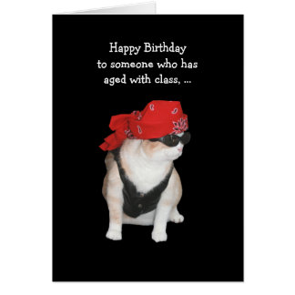 Funny Biker Cat Birthday Card