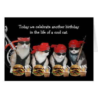 Funny Biker Cats Birthday Card