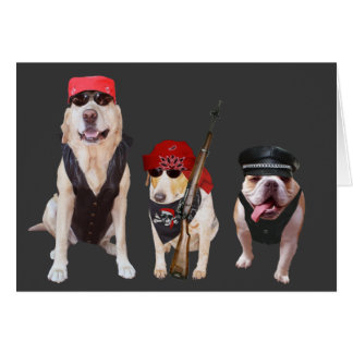Funny Biker Dogs/Lab Birthday Card