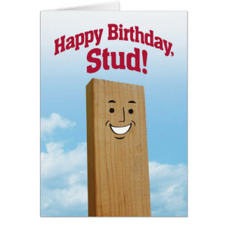 Funny Birthday Card for a Stud
