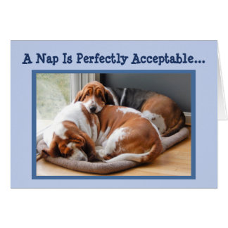 Funny Birthday Card w/Cute Napping Basset Hounds