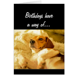 Funny Birthday Sneaking up on you Surprised Dog Card