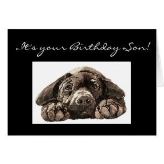 Funny Birthday Son, Labrador Retriever Card