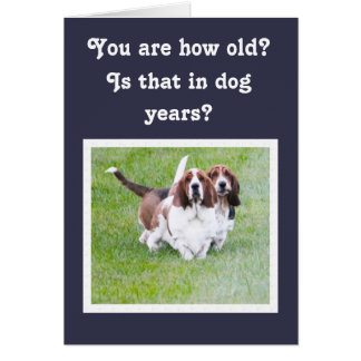 Funny Birthday w/Cute Basset Hounds & Balloons Card