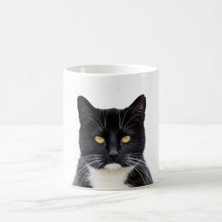 Funny Black Cats Pets Wildlife Mug