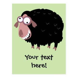 Funny Black Sheep Postcard