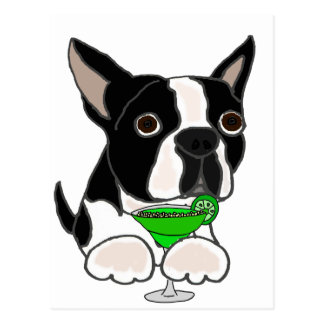 Funny Boston Terrier Dog Drinking Margarita Postcard