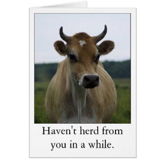 Funny Brown Cow greeting card