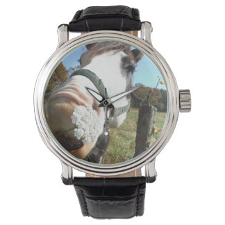 Funny Brown &White Horse, wildflower in teeth Wristwatches