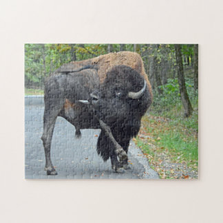 Funny Bull Bison Licking His Testicles Jigsaw Puzzle