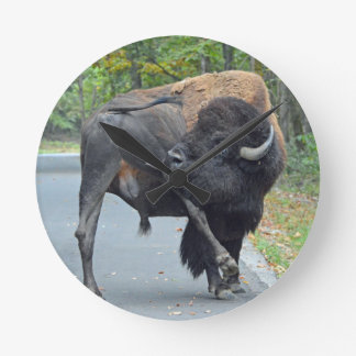 Funny Bull Bison Licking His Testicles Round Clock