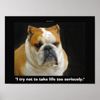 Funny Bull Dog Pet-lovers Demotivational Poster