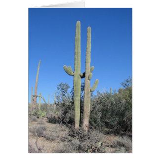 Funny Cactus Anniversary Card