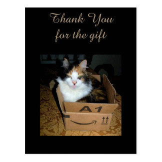 Funny Calico Cat in Box Thank You Postcard