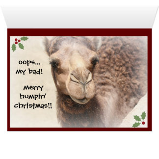Funny Camel Hump Day Christmas Card (2)
