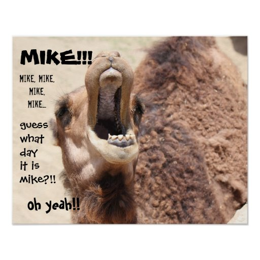 """Funny Camel """"hump day""""  Guess what day it is MIKE! Poster"""