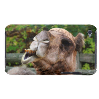 Funny Camel Wildlife Animal Photo Barely There iPod Case