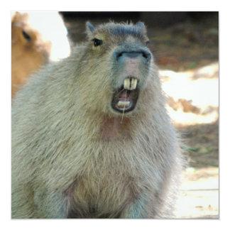 Funny Capybara  Invitations
