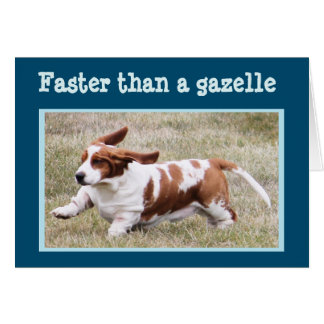 "Funny Card with ""The Birthday Basset"""