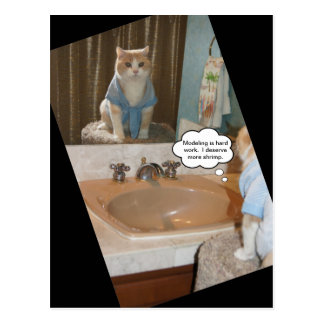 Funny Cat Affirmation About a Raise Postcard