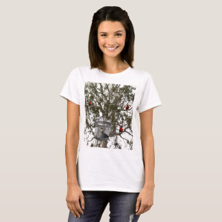 Funny Cat And Lorikeets Role Reversal, T-Shirt
