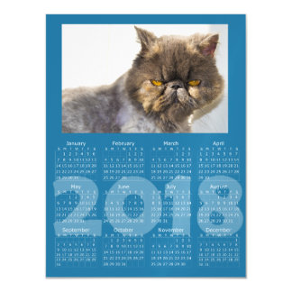 Funny Cat Blue 2018 Calendar Magnetic Card