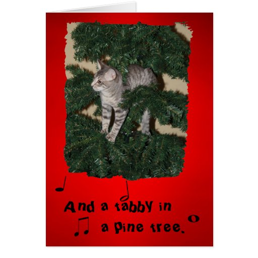 funny cat christmas greeting card zazzle