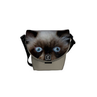 Funny Cat Courier Bag