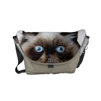 Funny Cat Courier Bags