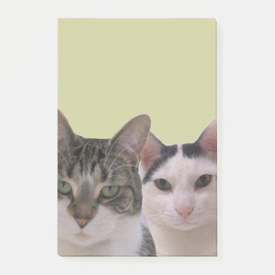 Funny Cat Gang Post-it® Notes
