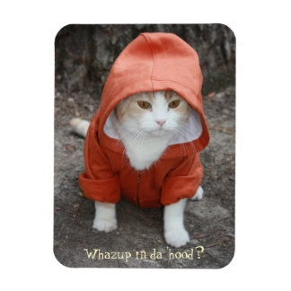 Funny Cat Kitty in a Hoodie Rectangle Magnet