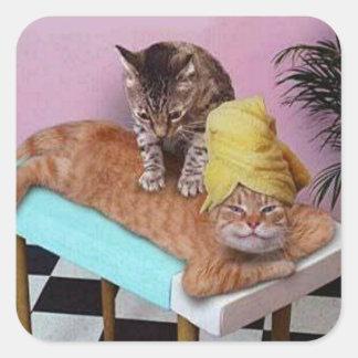 Funny Cat Massage Square Sticker