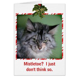 Funny Cat Mistletoe Christmas greeting card