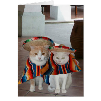 Funny Cat Spanish Birthday for husband or wife Greeting Card