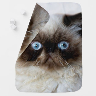 Funny Cat Swaddle Blankets