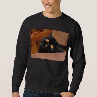 Funny Cat Sweatshirt