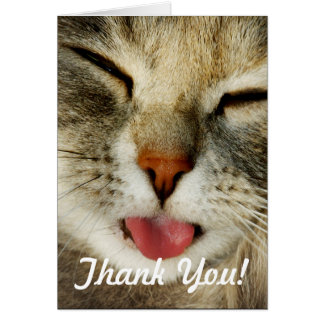 Funny Cat Thank You Card