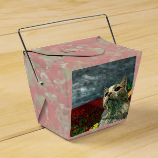 """Funny Cat """"Wizard of Oz"""" Baum Take Out Favor Box"""