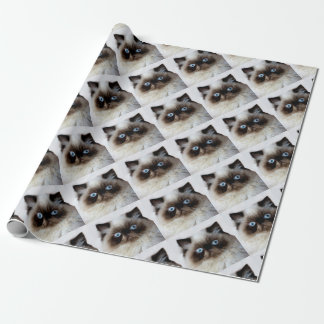 Funny Cat Wrapping Paper