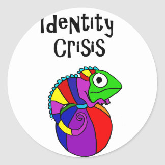 Funny Chameleon on Beach Ball Identity Crisis Classic Round Sticker