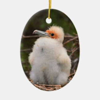 Funny chick ornaments