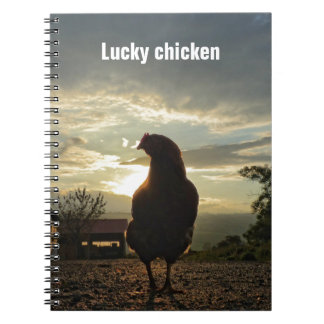 Funny Chicken in backlight 01.3 Spiral Note Book