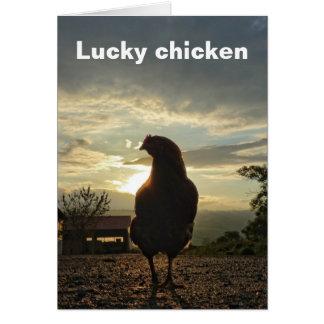 Funny Chicken in backlight 01.T Card