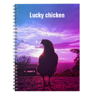 Funny Chicken in backlight 1.4F Spiral Note Books