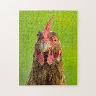 Funny Chicken - Photo Puzzle