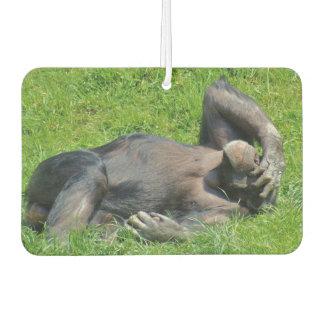 Funny Chimpanzee Air Freshener