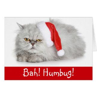 Funny Christmas  Bah Humbug Cat Card