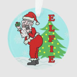 Funny Christmas Santa Elfie
