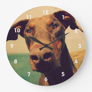 Funny Closeup of a Natural Doberman Dog Large Clock