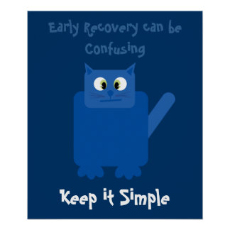 Funny Confused Cat Keep It Simple Recovery Poster
